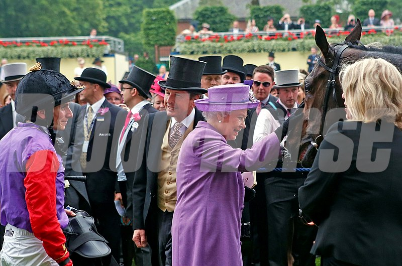 The Queen pats Estimate after winning the Ascot Gold Cup on June 20, 2013.