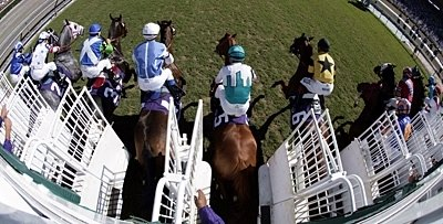The field breaks from the gate in the 2008 Breeders' Cup Mile at Santa Anita.