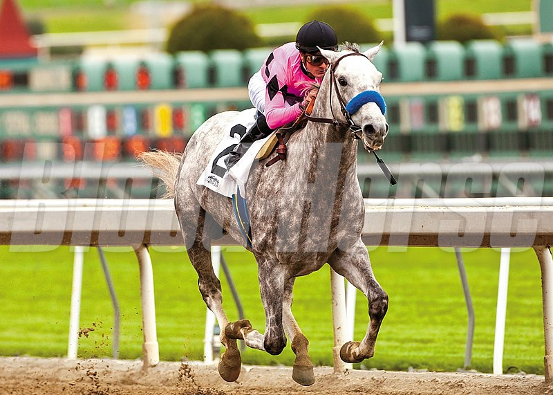 Gary and Mary West's Flashback and jockey Julien Leparoux win the Grade II, $200,000 Robert B. Lewis Stakes, Saturday, February 2, 2013 at Santa Anita Park, Arcadia CA.