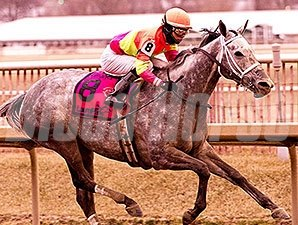 Lunar Surge wins the 2015 Maryland Racing Media Stakes.