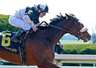 Graded Winners Seek Garland of Roses Return