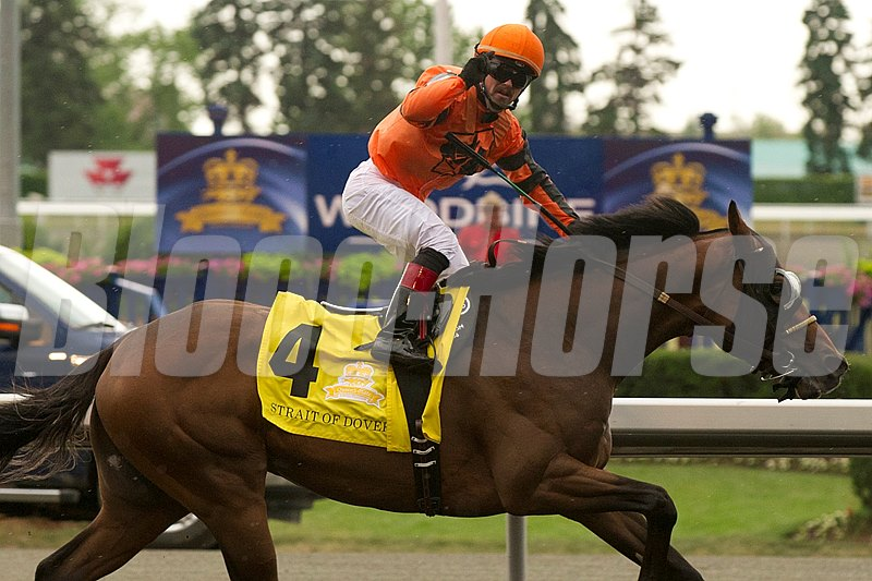 Toronto Ont. June 24 2012. Woodbine Racetrack. Jockey Justin Stein guides Strait of Dover to victory in the 153 running of the Queen's Plate Stakes. Strait of Dover is owned by Canyon Farms of Kelwona B.C. andt trained by Danny Vella.