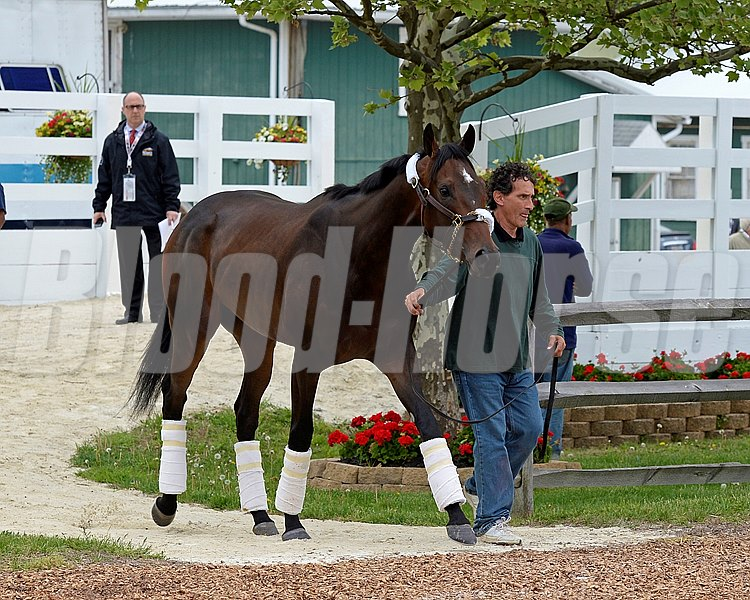 Caption: Ria Antonia arrives