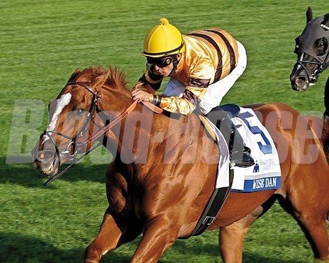 Wise Dan next ran at Keeneland, where he rallied for a 2 1/2 length win over the firm turf in the Shadwell Mile (gr. IT).