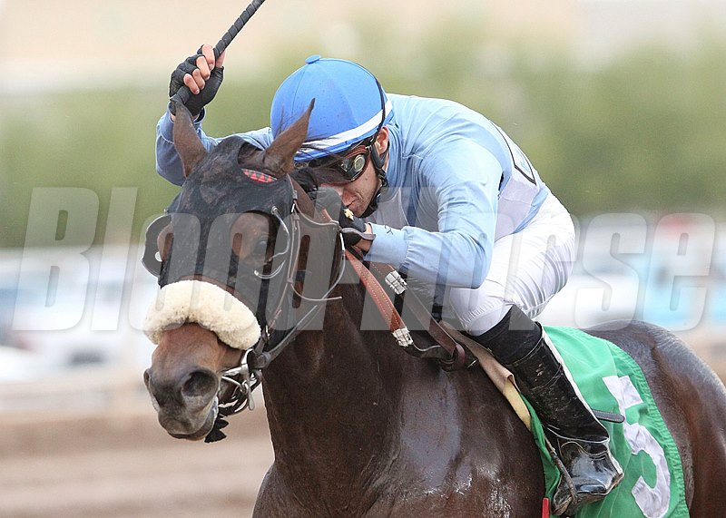 Lazy Daisy May rides to victory in the Arizona Breeders' Futurity Fillies at Turf Paradise in Phoenix, Arizona.