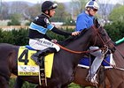 Rome: Shared Belief Returns to Light Training