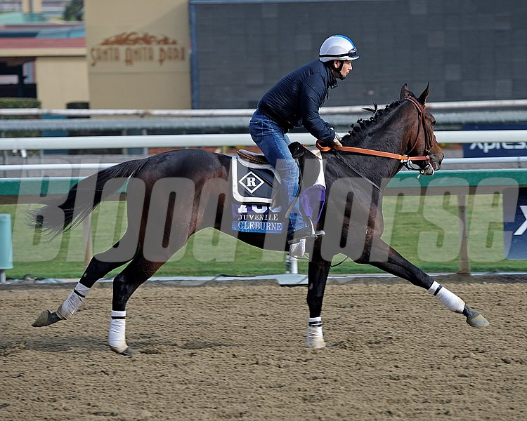Caption:  Cleburne