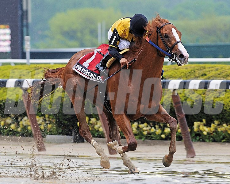 Freedom Child and jockey Luis Saez wins the Peter Pan Stakes at Belmont Park on May 11, 2013.