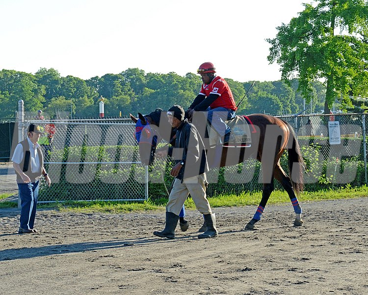 Caption: Social Inclusion walks back to barn with trainer Manny Azpurua looking on