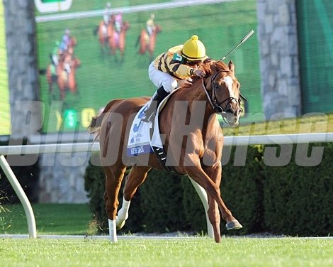 Wise Dan winning the 2012 Shadwell Turf Mile (gr. IT).
