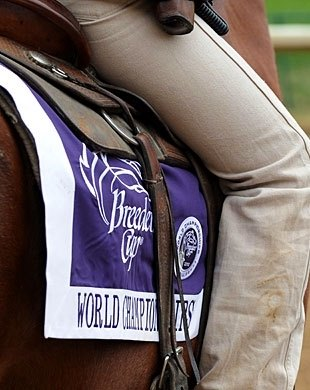 It's that time again, Breeders' Cup Time.