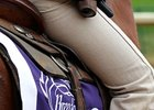 2010 Breeders' Cup Sights