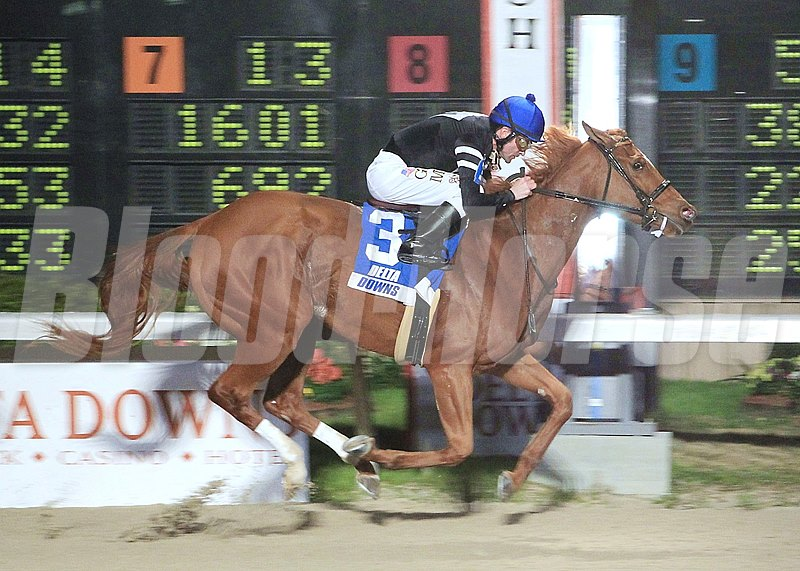 Guadalupe High wins the 5th running of The Azalea Stakes on 3/7/2013 for $75,000 at 7-1/2 Furlongs in 1:32.65.