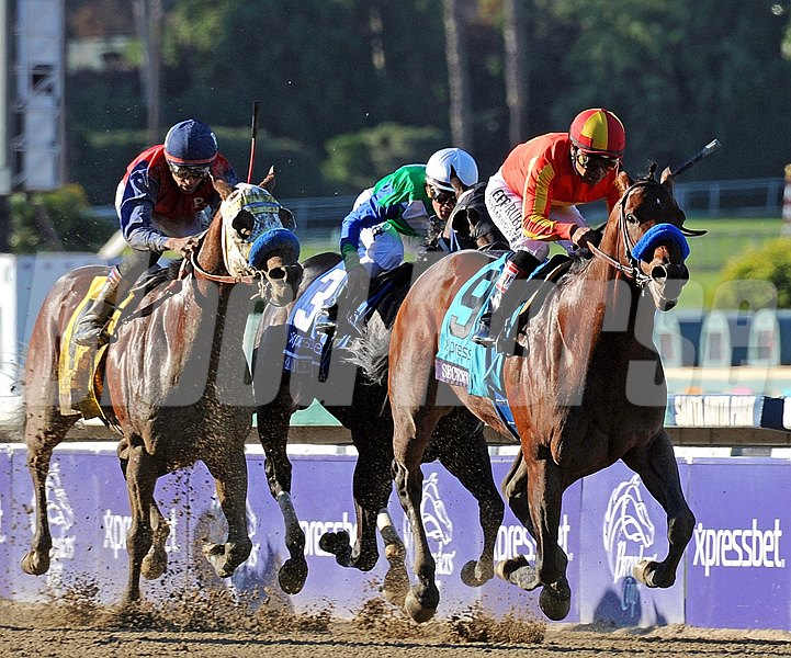 Secret Circle running in the Breeders' Cup Sprint.