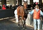 Keeneland January Sale Wrap: Day 3