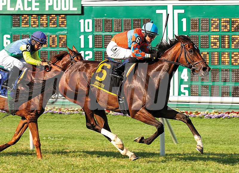 Laughing #6 with Angel Serpa riding won the $100,000 Eatontown Stakes at Monmouth Park in Oceanport, NJ.