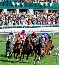 Can Horse Racing Truly Harness Social Media?
