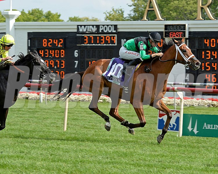 The Pizza Man deliveirs yet another victory at Arlington Park in the American St. Leger.  Scenes for the Arlington Million weekend of the Arlington Internaitonal Festival of Racing in Arlington Heights, Illinois. St. Leger image731 Photo by Anne M. Eberhardt