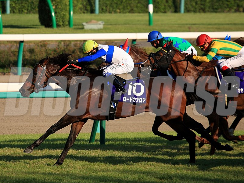 Champion sprinter Lord Kanaloa ran down pacesetter Hakusan Moon for a repeat victory in the Sprinters Stakes (Jpn-I), the first top-level race of Japan's fall season, Sept. 29 at Nakayama.
