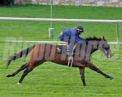 Holiday for Kitten with Jose Cruz working at Keeneland.
