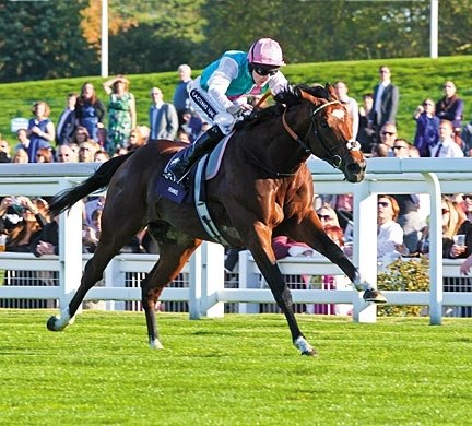 Frankel finished 2011 with a victory in the Queen Elizabeth II Stakes.