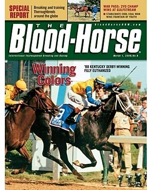 The Blood-Horse: 03/01/2008 issue