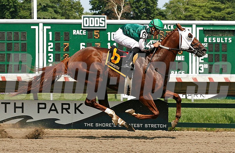 Chipshot #6 with Corey Nakatani riding won the $75,000 Select Stakes at Monmouth Park.  8/6/11  Photo By Bill Denver/EQUI-PHOTO