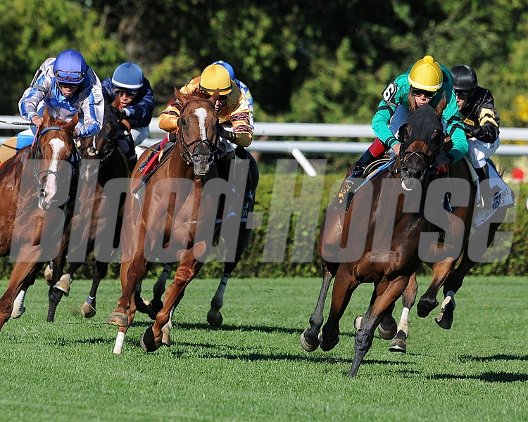 King Kreesa and Wise Dan battle for the lead around the final turn in the Fourstardave Handicap at Saratoga Race Course in New York.
