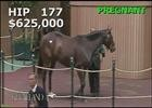 Keeneland Nov. Sale 2014 - Hip 177 - Renee's Titan