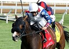 Dramedy Retired, to Stand at War Horse Place