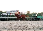 Turfway Injuries Down in January