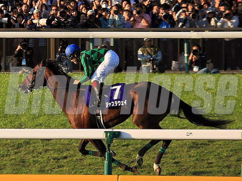 Just a Way unleashed an explosive burst of speed 400 meters out and romped away to win the Tenno Sho (Autumn) (Jpn-I) Oct. 27, 2013 overwhelming Japan's reigning Horse of the Year Gentildonna and last year's winner, Eishin Flash. Gentildonna finishes 2nd in the race.