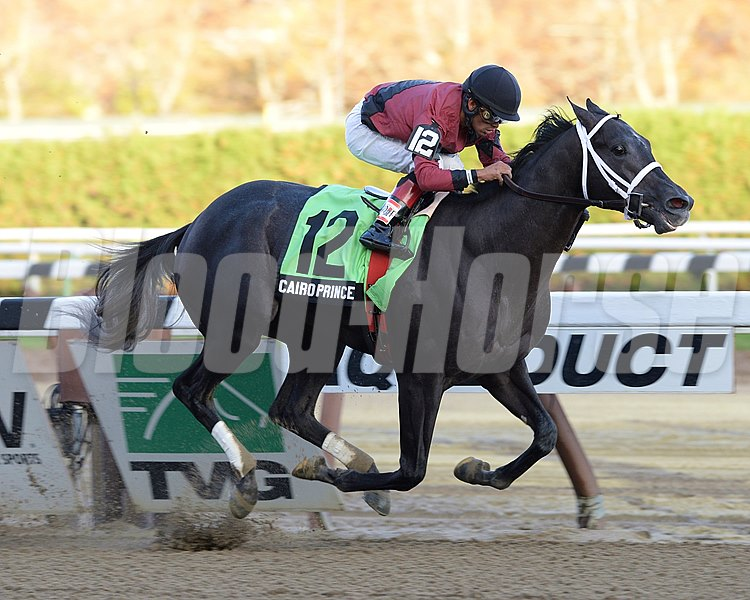 In his first start against winners, Cairo Prince scored a decisive victory over an 11-horse field after taking over the lead at the top of the stretch of the $250,000 Grade II Nashua Stakes for 2-year-olds at Aqueduct Racetrack.