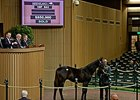 $850K War Front Colt Tops Keeneland Session