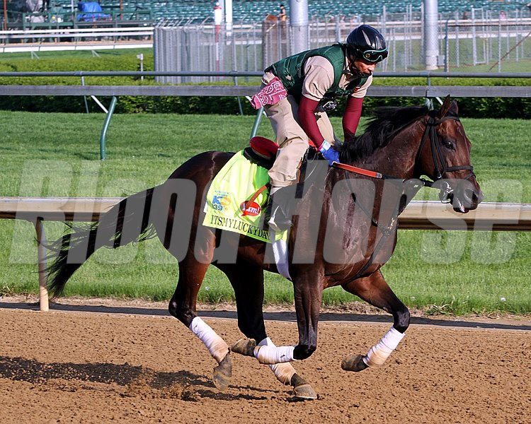 Itsmyluckyday on the track at Churchill Downs on May 1, 2013.