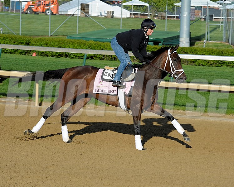 Caption: Unlimited Budget
