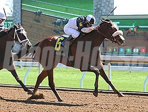 Princess Violet wins the 2015 Madison Stakes.