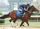 Untapable Works at Oaklawn Park