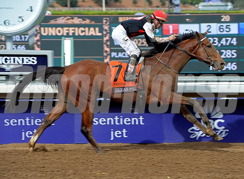 Texas Red, with Kent Desormeaux, wins the Breeders' Cup Juvenile (gr. I).