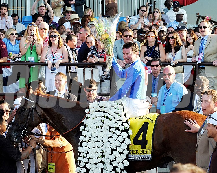 Summer Bird wins the 2009 Belmont Stakes