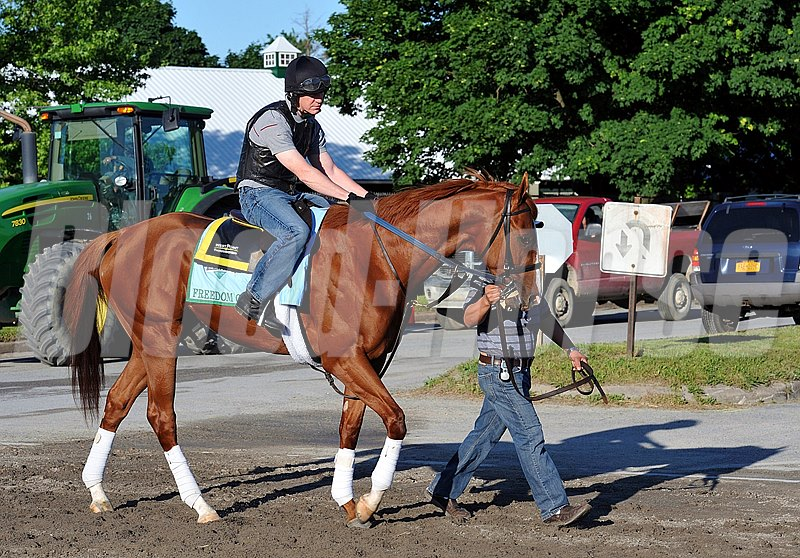 West Point Thoroughbreds Freedom Child, heading to the track Wednesday morning...