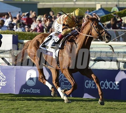 Coming home to win the Breeders' Cup Mile (gr. IT).