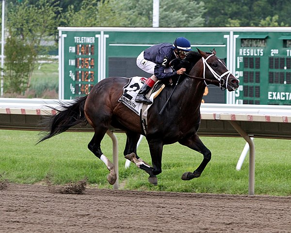 Verrazano with John Velazquez up wins the 32nd Running of The Pegasus Stakes at Monmouth Park.