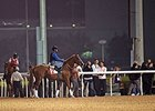 Dubai Trackwork Notes, March 27