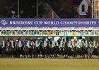 Breeders' Cup Will Not Expand Furosemide Ban