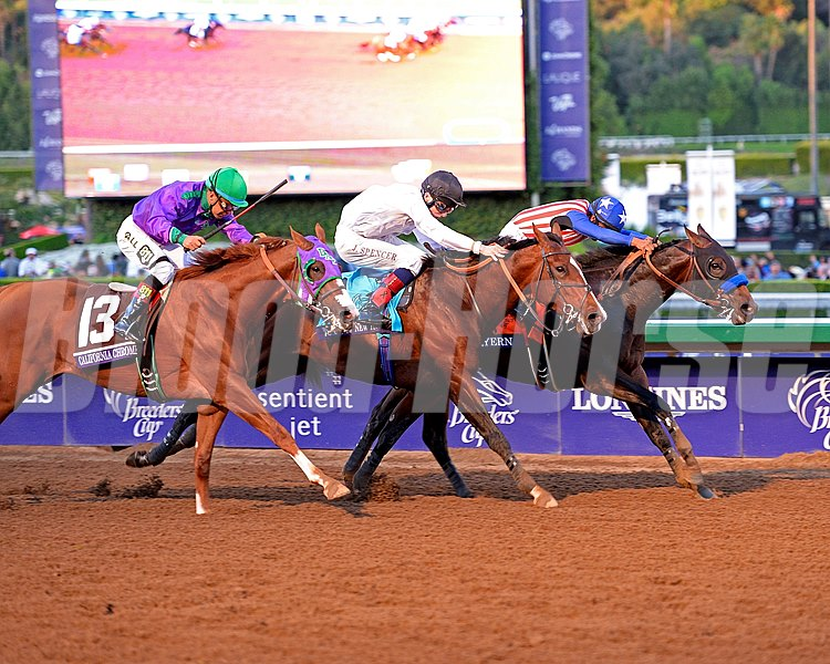 Looking for Breeders' Cup photos? Check out our four different slideshows here: http://www.bloodhorse.com/horse-racing/slideshows
