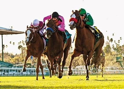 OUT OF THE GATE in this week's The Blood-Horse Magazine. Well Done: Favored Unzip Me (right) edges Teroda (center) and Remit in the Jan. 29 Wishing Well Stakes at Santa Anita.