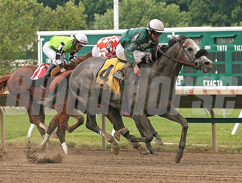 Well Spelled #4 with Pablo Fragoso riding won the $100,000 Grade III Jersey Shore Stakes at Monmouth Park in Oceanport, New Jersey on Saturday July 14, 2012.  Photo By Sabrina Elkington/EQUI-PHOTO.