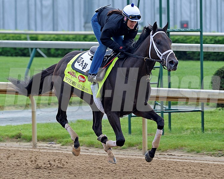Caption: Intense Holiday