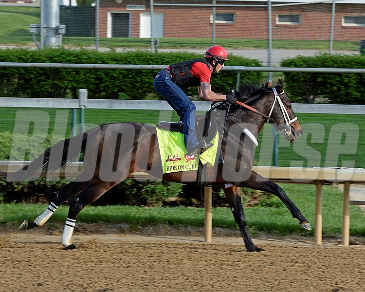 Caption: Ride On Curlin preparing to work